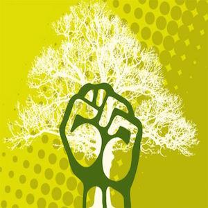 ecosocialismo
